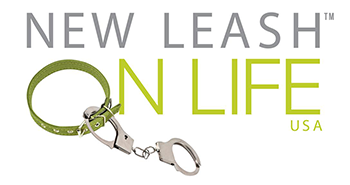 Getting the Most Out of DonorPerfect - New Leash on Life USA