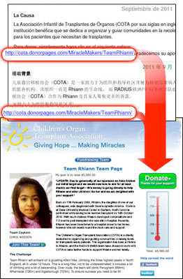 nonprofit fundraising software success case study - screenshot
