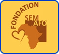 Example Online Donor Form: Fondation SEM AFO