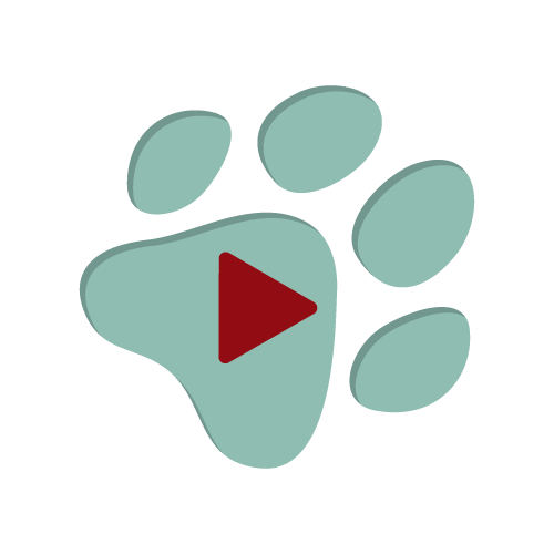 Paw print fundraising software review video play button