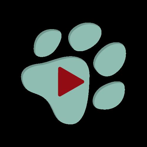 Paw print video play button