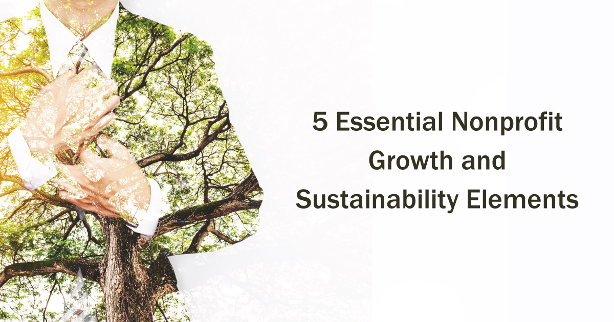 5 Essential Nonprofit Growth and Sustainability Elements