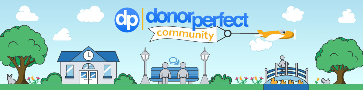 We take a look back at all the surprising ways DonorPerfect clients have connected in DP Community this past year.